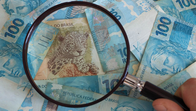 Блог Павла Аксенова. Ягуар (Panthera onca). Brazilian currency, high nominal under the magnifier. Фото rochu_2008 - Depositphotos