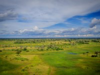 Клуб путешествий Павла Аксенова. Ботсвана. Река Окаванго. Aerial view of the Okavango delta in Botswana. Фото Simoneemanphotography - Depositphotos