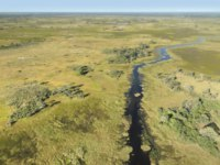 Клуб путешествий Павла Аксенова. Ботсвана. Река Окаванго. Aerial view of the Okavango Delta in Botswana, Africa. Фото prill - Depositphotos