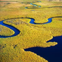 Клуб путешествий Павла Аксенова. Ботсвана. Река Окаванго. Aerial view of the Okavango delta in Botswana. Фото Gi0572 - Depositphotos
