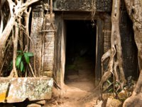 Камбоджа. Храмовый комплекс Ангкор. Angkor Wat monk. Ta Prom Khmer ancient Buddhist temple in jungle forest. Фото dimaberkut - Depositphotos