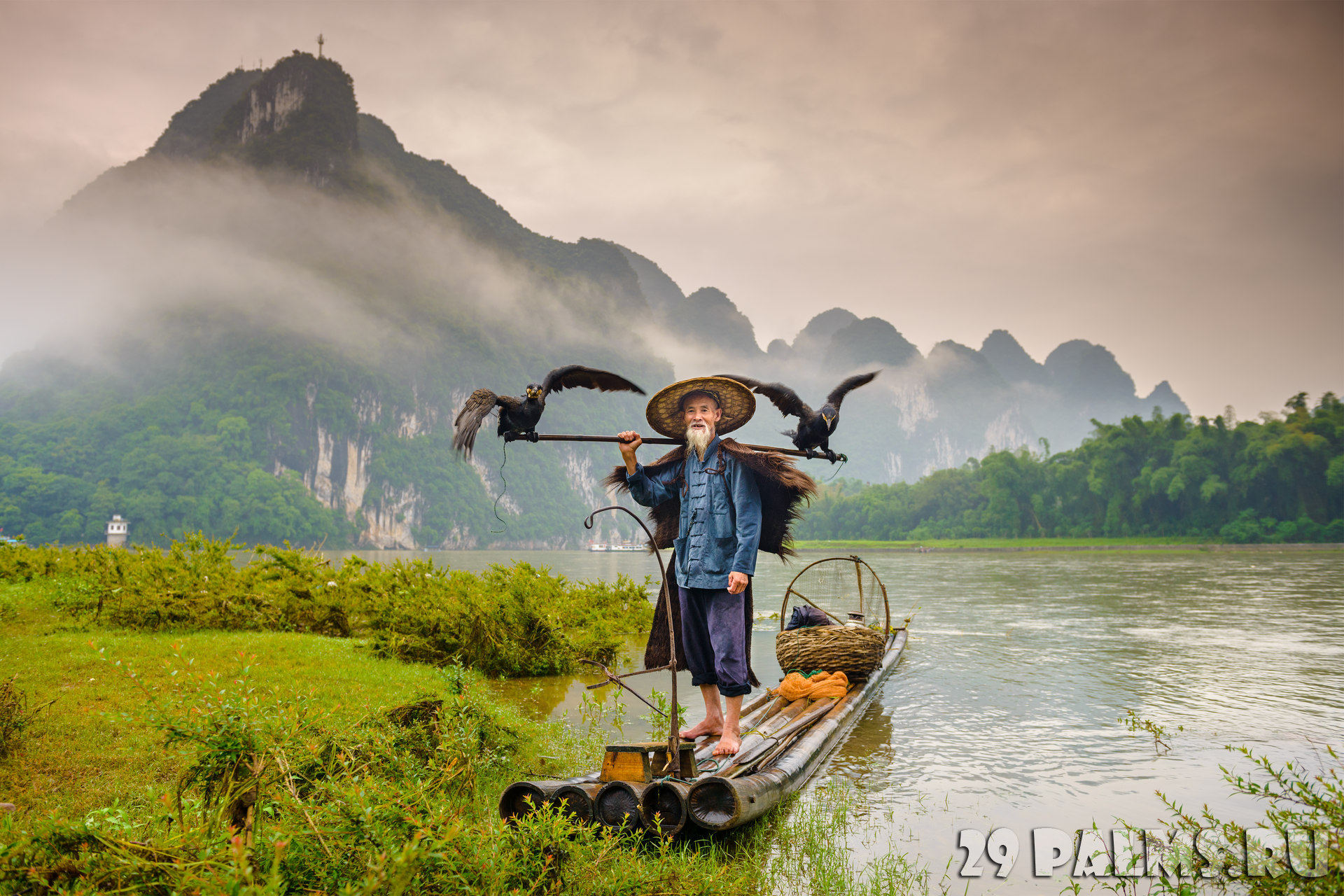 Китай. Провинция Гуйлинь. Рыбак с бакланами. Cormorant fisherman and his birds on the Li River in Yangshuo, Guangxi, China. Фото sepavone - Depositphotos