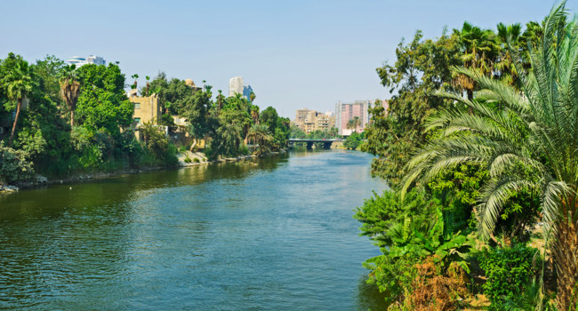 Египет. Каир. El Roda island and Nile Cornish in City Garden district are covered by lush greenery, Cairo, Egypt. Фото efesenko - Depositphotos