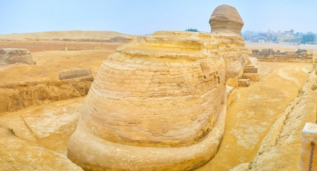 Египет. Гиза. Большой сфинкс. The huge limestone carved body of the Great Sphinx in form of a lion with human head is the most known landmark in Egypt, Giza N