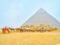 Египет. Пирамиды Гизы. The horse drawn carriages standing in a special standing area during feeding camels and horses in Giza pyramid complex in Giza. Фото efe