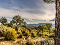Лазурный берег Франции. Фрежюс. Panoramic view on Valley of Roquebrune Sure Agens and Frejus with Cote d'Azur, France. Фото neofelizz - Depositphotos
