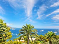 Лазурный берег Франции. Вильфранш. Sea landscape with palm trees and blue sky. Фото Liliana Fichter - Depositphotos