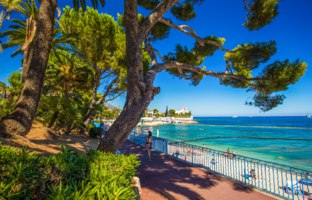 Beach promenade in the Beaulieu-sur-mer village with green trees and azure clear water, cote dazur, French riviera, France, Europe. Фото gevision - Depositphotos