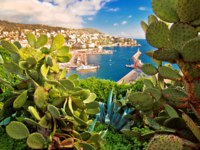 City of Nice colorful waterfront and yachting harbor view through mediterranean cactus and agave, French riviera, Alpes Maritimes department. Фото xbrchx-Deposit