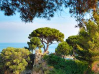 Лазурный Берег Франции. Ницца. The eastern side of the Castle Hill in Nice with trees. Фото luziana - Depositphotos