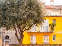 Лазурный Берег Франции. Архитектура Ниццы. Nice in France, building yard with typical colorful facade, with an olive tree. Фото pascalegueret-Dep