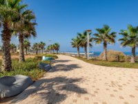 Израиль. Ашкелон. Paved promenade with palms and stone benches along Mediterranean sea coastline in Ashkelon, Israel. Фото rglinsky-Depositphotos
