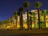 Израиль. Эйлат. The slender palms separate the quiet night beach from the city center of Eilat, Israel. Фото efesenko - Depositphotos