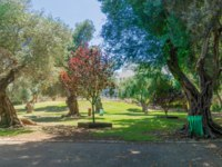 Клуб путешествий Павла Аксенова. Израиль. Хайфа. View of the Binyamin garden, in Hadar HaCarmel neighborhood, Haifa, Israel. Фото RnDmS-Depositphotos