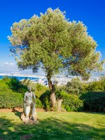 Клуб путешествий Павла Аксенова. Израиль. Хайфа. A Sculptures Garden (named Mitzpor HaShalom-Vista of Peace) in Haifa, Israel. Фото RnDmS-Depositphotos