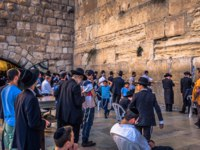 Израиль. Иерусалим. Jews praying in the Western Wall in the old City of Jerusalem, Israel. Фото RPBMedia - Depositphotos
