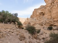 The path leading to the monastery of St. George Hosevit (Mar Jaris) in Wadi Kelt near Mitzpe Yeriho in Israel. Фото svarshik1.gmail.com-Depositphotos