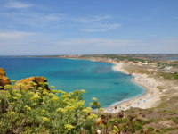 Италия. Сардиния. PANORAMIC VIEW ON THE SEA, TARROS, SARDINIA, ITALY. Фото  EUGENIO MURARO - Depositphotos
