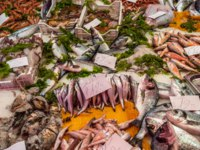 Италия. Сицилия. Катания. Seafood at La Pescheria fish market in Catania, Sicily, Italy. Фото javarman - Depositphotos