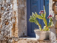 Rustic metal vase with a cactus plant on a window sill of a typical stone house in the small fishing village Marzamemi, East Sicily. Фото siculodoc - Depositphotos