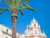 Италия. Сицилия. Рагуза. Palm tree in the main square of Ragusa Ibla, Sicily, with the baroque church of St. George. Фото siculodoc - Depositphotos