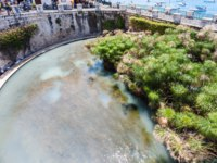 People view of Fonte Arethusa (Spring of Arethusa) in Syracuse city in Sicily. In ancient Greek mythology Arethusa was Nereids nymph. Фото vvoennyy-Deposit