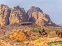 Иордания. Петра. A man on a donkey is looking at Al Habis mountain behind Qasr al Bint in Petra, Jordan. Фото Dudlajzov - Depositphotos