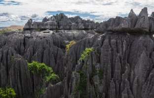 Мадагаскар. The Tsingy de Bemaraha Strict Nature Reserve  Province of Mahajanga, Madagascar. Фото Alvarez-Riziky - Depositphotos