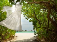 Мальдивы. Four Seasons Resort Maldives at Landaa Giraavaru. Wedding. Фото bezikus - Depositphotos