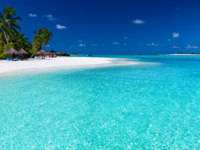 Мальдивы. Maldives. Palm trees over stunning lagoon and white beach. Фото Martin Valigursky - Depositphotos
