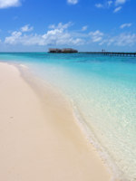 Мальдивы. Maldives with palm, sand and ocean. Фото Сергей Суханов - Depositphotos