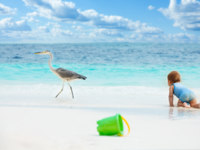 Мальдивы. Maldives. Fun baby games on the beach. Фото serrnovik -  Depositphotos