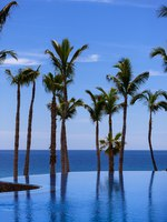 Клуб путешествий Павла Аксенова. Мексика. Нижняя Калифорния. Лос Кабос. One&Only Palmilla. Pools Detail