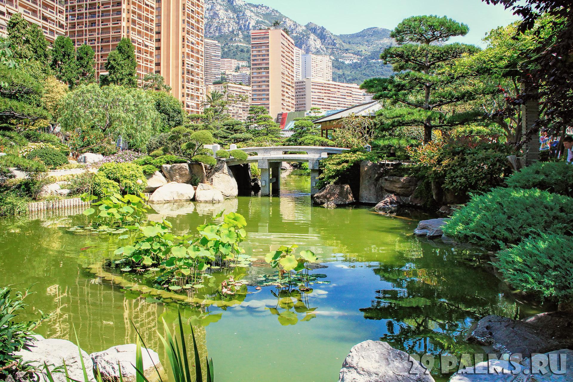 Jardin japonais de monaco 29 for Jardin japonais monaco