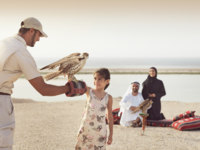 ОАЭ. Абу-Даби. Desert Islands Resort & Spa by Anantara. Falcon Show Family