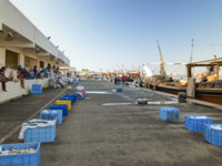 Клуб путешествий Павла Аксенова. ОАЭ. Эмират Аджман (Ajman). Fish market in the emirate of Ajman. UAE. Фото neiezhmakov - Depositphotos