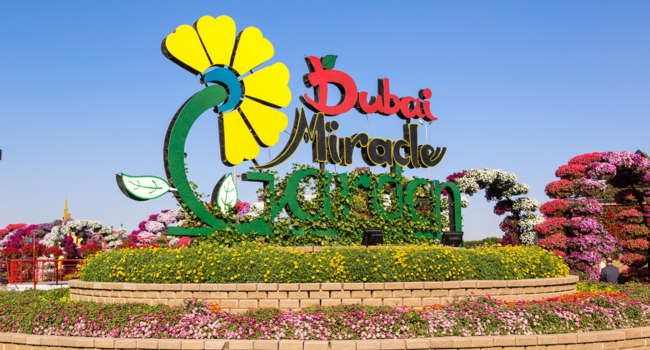 ОАЭ. Дубай. Сад чудес. Entrance to Dubai miracle garden. Dubai. UAE. Фото bloodua - Depositphotos