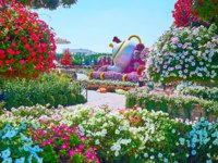 The pleasant Miracle Garden alley with a view on teapot installation and lush and colorful petunia flowers in Dubai. Фото efesenko - Depositphotos