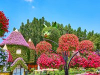 The hanging pots with bright petunia flowers in front of the installation of giant cat and house, Miracle Garden in Dubai. Фото efesenko - Depositphotos