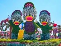 ОАЭ. Дубай. Сад чудес. The cartoon characters of Ducktales - Huey, Dewey and Louie Duck in Miracle Garden in Dubai. Фото efesenko - Depositphotos