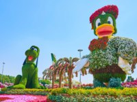 ОАЭ. Дубай. Сад чудес. The installtions of Webby and Goofy cartoon characters in Miracle Garden in Dubai. Фото efesenko - Depositphotos