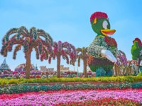 ОАЭ. Дубай. Сад чудес. The installtions of Webby of DuckTales cartoon series and Minnie Mouse in Miracle Garden in Dubai. Фото efesenko - Depositphotos