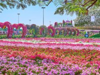 Enjoy the colorful petunia flower beds, heart arch alley, installation of the airplane and fairy castle in Miracle Garden in Dubai. Фото efesenko - Depositphotos