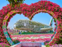 ОАЭ. Дубай. Сад чудес. The heart shaped arch with petunias in front of Emirates A380 aircraft, covered with white flowers, Miracle Garden Dubai. Фото efesenko-Deposi