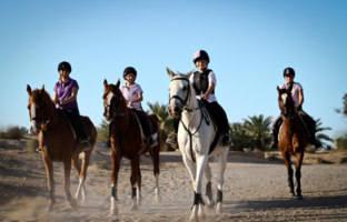Клуб путешествий Павла Аксенова. ОАЭ. Эмират Дубай. JA Al Sahra Desert Resort. Horse Riding