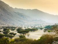 ОАЭ. Рас-эль-Хайма. Хаджарские горы. Jabal Jais mountain and desert landscape near Ras al Khaimah. Фото CreativeFamily - Depositphotos