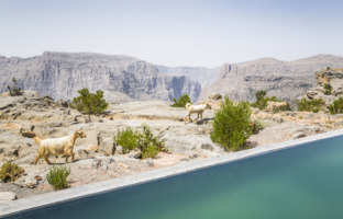 Клуб путешествий Павла Аксенова. Оман. Провинция Эд Дахилия. Anantara Al Jabal Al Akhdar Resort. One Bedroom Anantara Cliff Pool Villa  View
