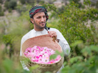 Клуб путешествий Павла Аксенова. Оман. Провинция ДаOmani man with rose basket in Jabal AL Akhdar. Фото katiekk - Depositphotos