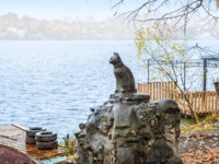 Золотое кольцо России. Плес. Monument to the Cat Muha in Plyos on the banks of the Volga on an autumn rainy day. Фото yulenochekk - Depositphotos