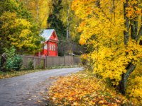 Золотое кольцо России. Плес. Red wooden house among yellow autumn trees in Plyos. Фото yulenochekk - Depositphotos